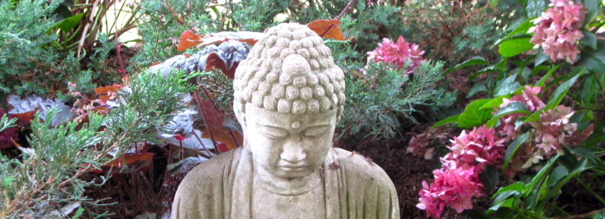Jataka buddhism definition of sexual misconduct
